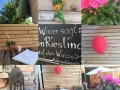 Rheingauer Schlemmerwochen - Picknick im Weingut werk2