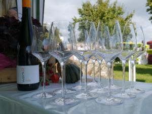 Wein Genuss am Morschberg @ Wein Genuss am Morschberg | Geisenheim | Hessen | Deutschland